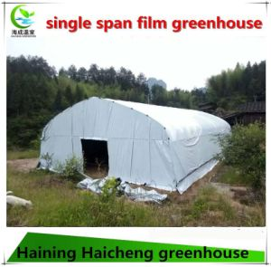 Single Spam Film Greenhouse for Mushroom Planting pictures & photos