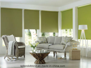 Windows Blinds Roller Blinds Windows Blinds Use Windows Blinds pictures & photos