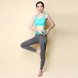 Yoga Suit Workout Pants Running Bra Tights pictures & photos