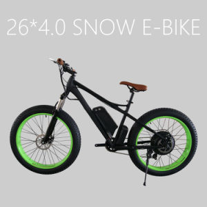 Strong Frame 48V 1000W Fat Tire Electric Bike for Sale pictures & photos