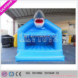 Inflatable Bouncy Castle, Inflatable Jumping Castle, Inflatable Bouncer for Kids pictures & photos