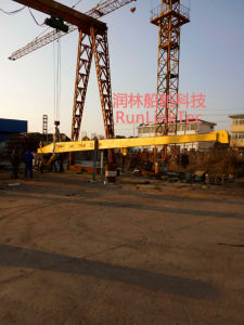 Crane/Marine Hydraulic Crane/Shipbuilding pictures & photos