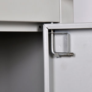 Steel Filing Cabinet (DQX-1) pictures & photos