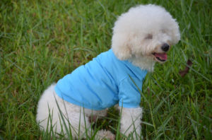 Pet Product Supply Accessory Costumes Pet Dog Pure Color Clothes pictures & photos