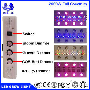 LED Grow Light Plant Lamp for Indoor Plants 0-100% Dimmable WiFi Control 1000W 1500W 2000W High Power pictures & photos