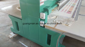 Hye-FL 636/125*550*1300 Flat Embroidery Machine pictures & photos