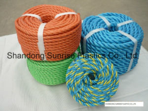 Color PP Rope pictures & photos