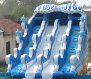 Giant Inflatable Floating Water Slide (HL-010) pictures & photos