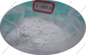 Raw Steroid Powder 1-DHEA / 1-Androsterone CAS 76822-24-7 for Bodybuilding pictures & photos