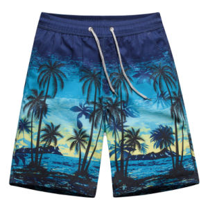 2017 Men Swimming Shorts Men′ Briefs Beach Wear Shorts pictures & photos