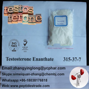 99% Raw Testosterone Enanthate Steroid Powder for Gym Bodybuilding pictures & photos