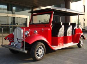 Electric Car with 8 Seats for Sightseeing pictures & photos