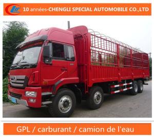 HOWO 8X4 Camion De Fret Cargo Truck pictures & photos