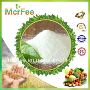 Factory Ammonium Sulphate 21% with Best Price