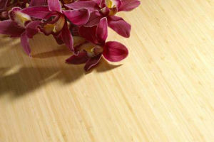 Engineered Bamboo Flooring Natural Strand Woven UV Lacquer pictures & photos
