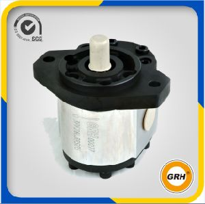 Hydraulic Pump and Bi-Direction Cast Iron Gear Motor pictures & photos