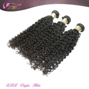 100% Human Hair Natural Indian Hair Afro Kinky Hair Bulk pictures & photos