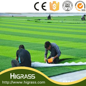 50mm Height Cheap Artificial Grass for Football Field pictures & photos