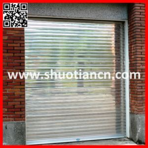 Slive Color Stainless Steel Rolling Door (ST-002) pictures & photos
