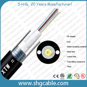 36 Fibers Outdoor Fiber Optic Cable GYXTW pictures & photos