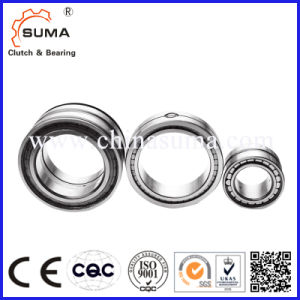 Competitive Price Hot Sale Full Complement Cylindrical Roller Bearing pictures & photos