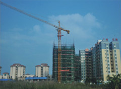 Construction Building Lifting Crane pictures & photos
