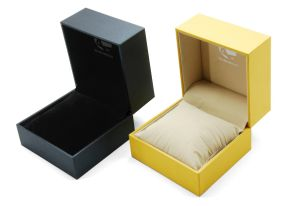 2015 High End Customized Popular Boutique Functional Luxury Plastic Booklet Watch Box