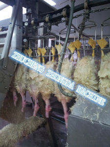 Good Duck Wax Machine-Duck Slaughtering Equipment pictures & photos
