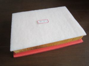Air Filter 17801-38050 for Toyota pictures & photos