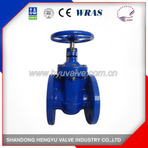 OS & Y Resilient Seated Gate Valve for Industry pictures & photos