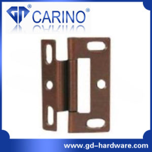 Hot Selling Flag Shape Door Hinge with High Quality (HY876) pictures & photos