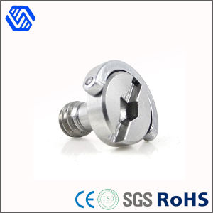 Stainless Steel Precision Captive Camera Screws pictures & photos