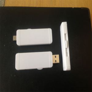Plastic USB Flash Drives with Extension-Type pictures & photos