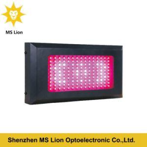 800W 900W 1000W 1100W 1200W Indoor LED Grow Light pictures & photos