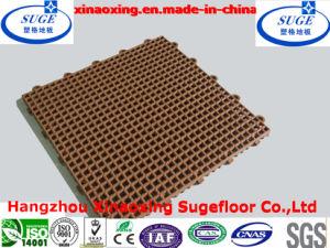 Good Repution for Interlocking Sport Flooring Mat pictures & photos