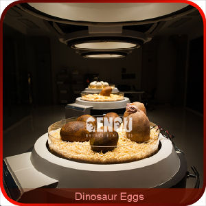 Dinosaur Egg Replica for Dinosaur Museum pictures & photos