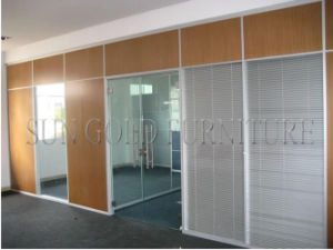 Modern Glass-Board Panel System Partition Used Office Room Dividers (SZ-WS570) pictures & photos