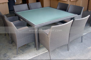 Mtc-102 Rattan Dining 9PCS Set Outdoor Furniture pictures & photos