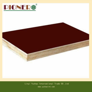 Recycled Core Film Faced Plywood for Algerian Market pictures & photos
