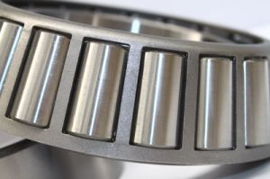 Hot Sale Msdb Bearing Tapered Roller Bearings Roller Bearing (368/363)