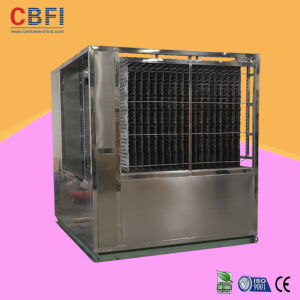 Factory Low Temperature Usage Plate Ice Machine pictures & photos