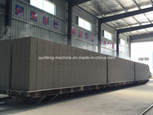 Sand Lightweight Concrete Block Production Line pictures & photos