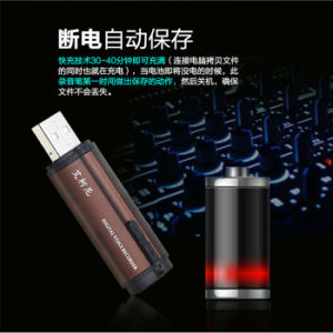 Mini Portable Digital USB Voice Recorder New