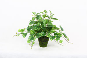Home Decoration Artificial Scindapsus Aureus Plants and Flowers