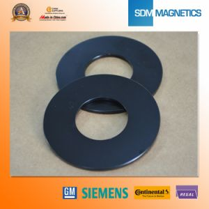 Permanent Ring Motor Ts 16949 Neodymium Magnet pictures & photos