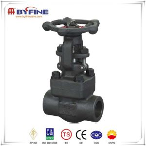 Forged Steel Flange Connection Gate Valve pictures & photos