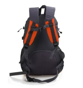 University Jeans Manufacturer Nylon Backpack Sh-16071804 pictures & photos