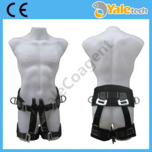 En361 Men Body Harness Yl-S320 pictures & photos