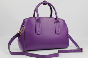 Fashional and Good Quality Ladies Leather Handbags pictures & photos
