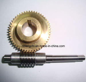 Set Transmission Parts Drive Worm and Worm Gear pictures & photos